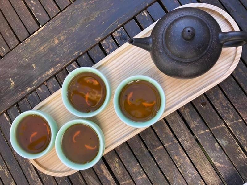 Workshop de chá de Camélia entre Matosinhos e Vila do Conde