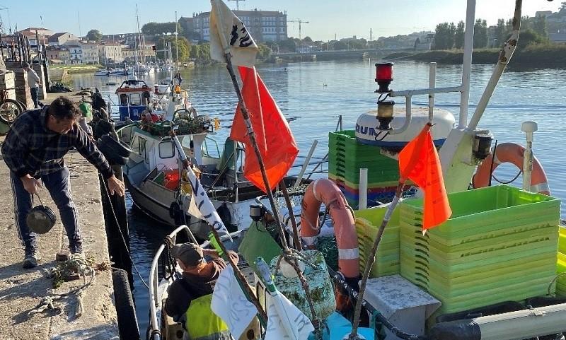Iniciativa Liberal encontrou-se com pescadores de Vila do Conde