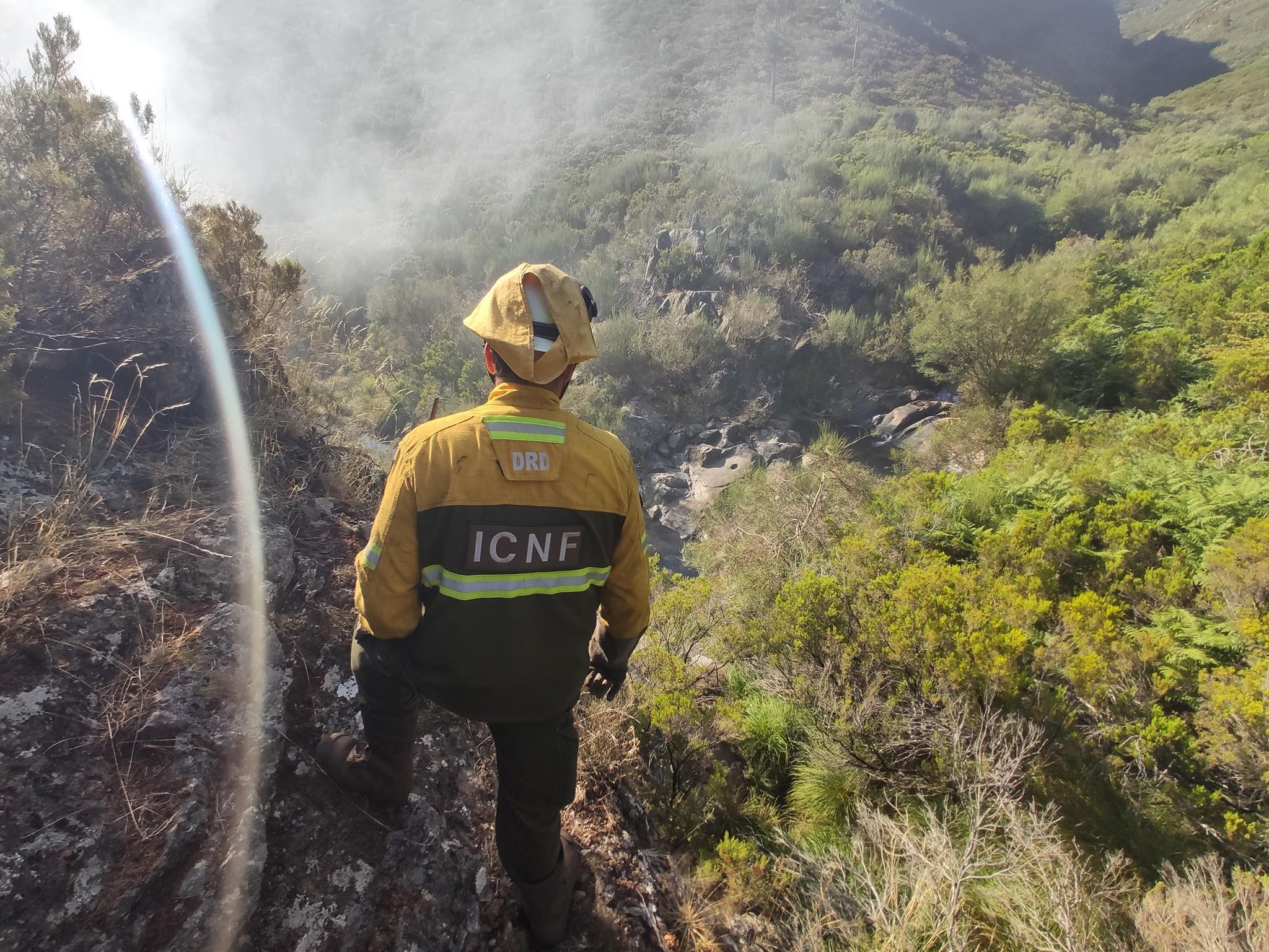 Portugal teve o menor número de incêndios desde 2011